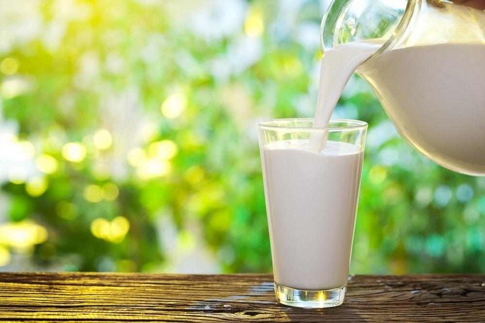 Qué contiene un vaso de leche?