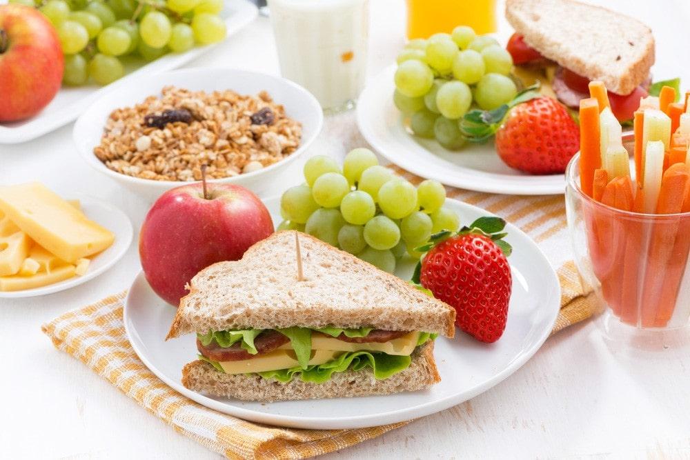 El Plato Del Bien Comer Para Los Niños