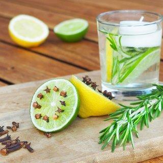 Remedios naturales para mantener a los insectos lejos de tu hogar