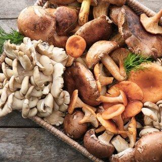 Comer hongos podría ser la mejor forma de prevenir enfermedades como el Alzheimer