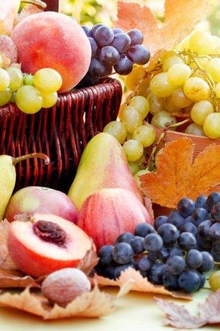 Frutas y verduras ideales para tu cuerpo en el otoño