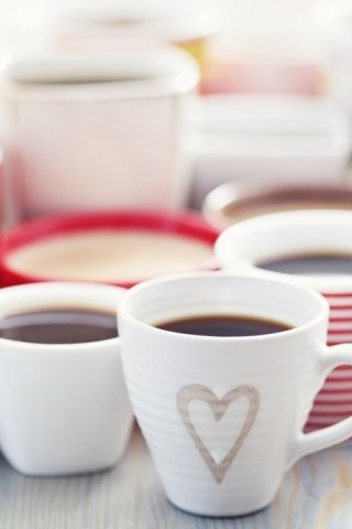 ¿De dónde viene el mejor café mexicano?