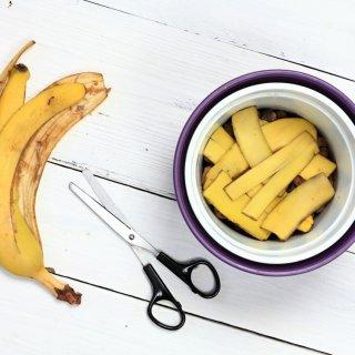 Cáscaras de plátano: el mejor aliado para tus plantas