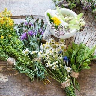 Aprovecha estas 6 hierbas de cocina para combatir el estrés