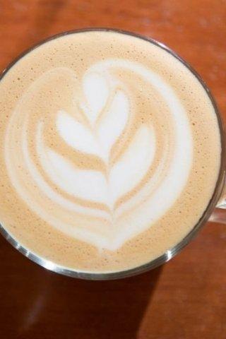 Feral Café, café salvaje en la ciudad