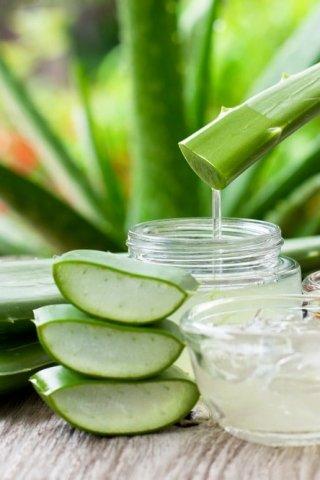 4 ingredientes naturales para desintoxicar tu cuero cabelludo