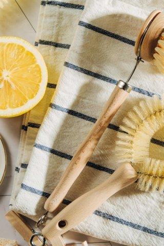 ¿Cómo limpiar el cochambre tus paredes?