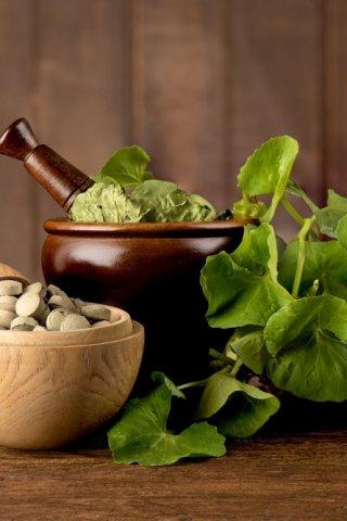 Ingredientes naturales que son básicos en el skincare coreano