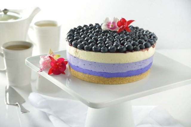 Cheesecake Multicolor Sin Horno (receta en vivo)