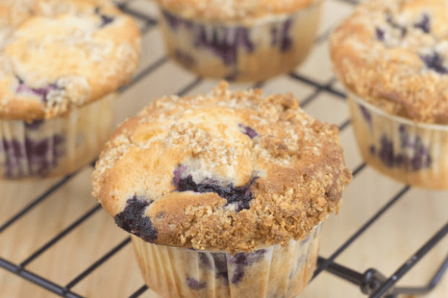 Blueberry muffins Sponges