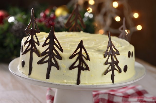 Christmas cake with chocolate saplings