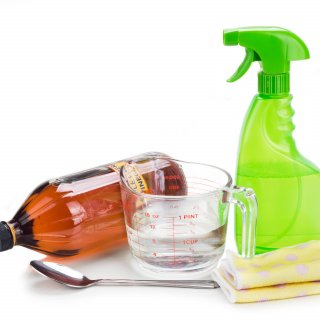 Alternatives to disinfect the home7 alternatives to disinfect the home